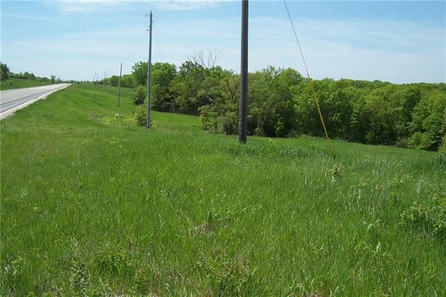 Hwy 65 Highway, Princeton, MO 64673 (#2166206) :: House of Couse Group