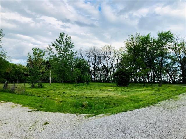 311 S Morrison Road, Raymore, MO 64083 (#2166287) :: House of Couse Group