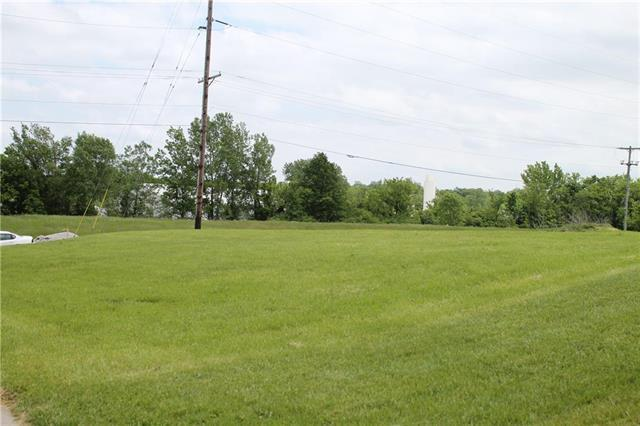 Locust Street, Harrisonville, MO 64701 (#2167496) :: House of Couse Group