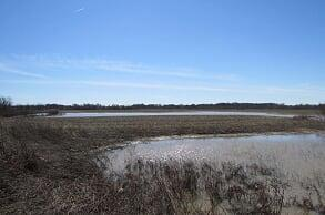 TBD SW Hwy T Highway, Clinton, MO 64735 (#2167839) :: No Borders Real Estate