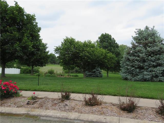 Clayton Place, Odessa, MO 64076 (#2168307) :: Kansas City Homes