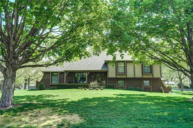 411 Appaloosa Drive, Raymore, MO 64083 (#2170622) :: No Borders Real Estate