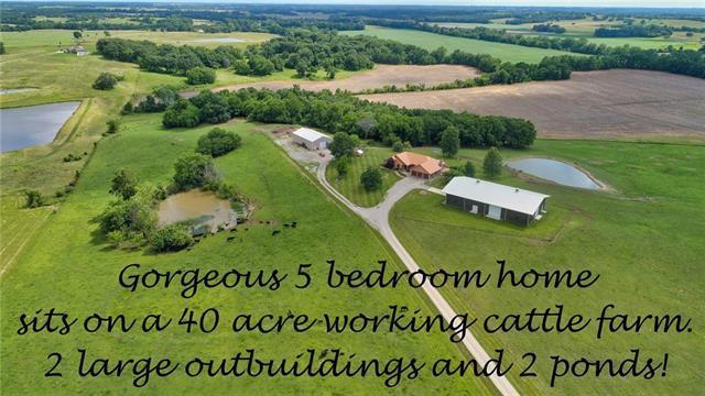 220 SW Bb Road, Warrensburg, MO 64093 (#2171866) :: NestWork Homes