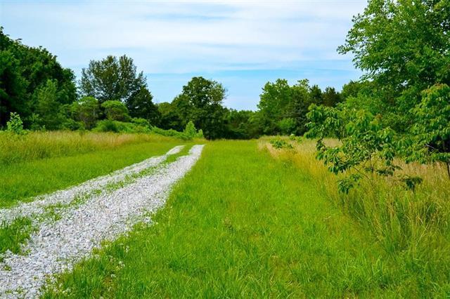 21391 Rb Highway, Flemington, MO 65650 (#2172482) :: Kansas City Homes