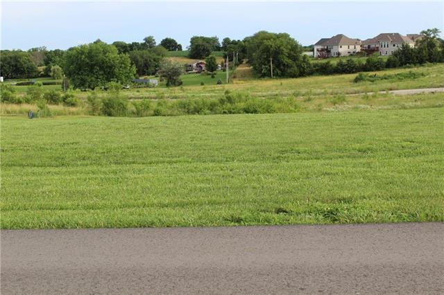 14156 Millstone Boulevard, St Joseph, MO 64505 (#2173253) :: Kansas City Homes