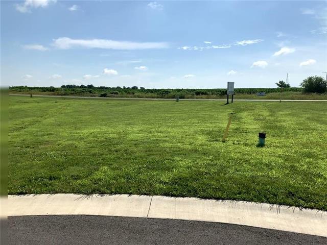 730 NE 184 Street, Lawson, MO 64062 (#2175222) :: Eric Craig Real Estate Team