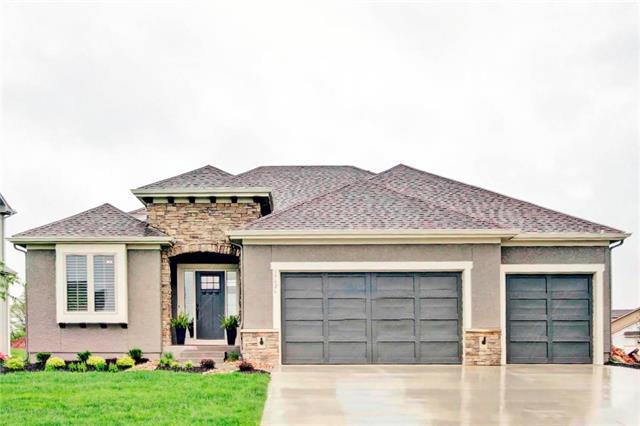 15826 W 165th Terrace, Olathe, KS 66062 (#2175616) :: Edie Waters Network