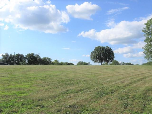 11753 Mo Route  6 Highway, Winston, MO 64689 (#2176664) :: Clemons Home Team/ReMax Innovations