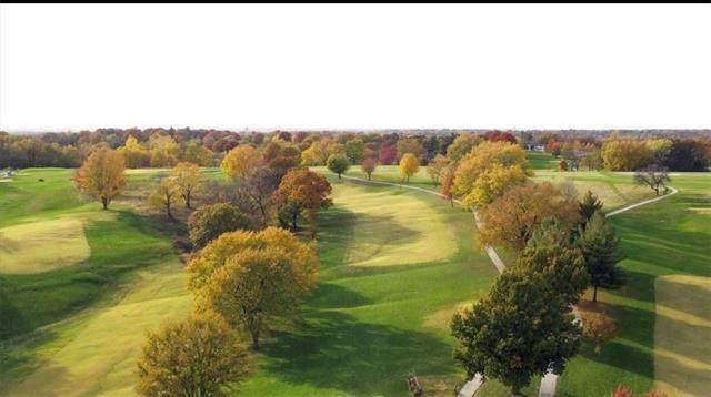 907 E Golf Hill Drive, Excelsior Springs, MO 64024 (#2188812) :: Eric Craig Real Estate Team
