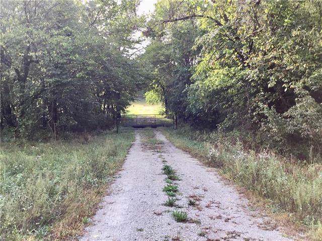 478 NW 1901 Road, Kingsville, MO 64061 (#2190141) :: Team Real Estate