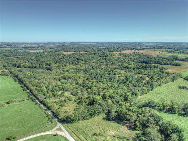 NW 304th Street, Gower, MO 64454 (#2192989) :: Clemons Home Team/ReMax Innovations