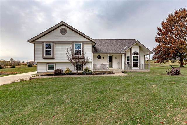 18300 N American Avenue, Platte City, MO 64079 (#2196925) :: Ask Cathy Marketing Group, LLC