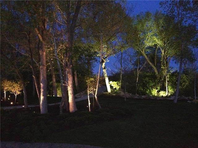 9358 Cottonwood Canyon Drive, Lenexa, KS 66219 (#2198853) :: Dani Beyer Real Estate