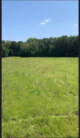 Lot 1 Shannon Avenue, Smithville, MO 64089 (#2199623) :: Clemons Home Team/ReMax Innovations