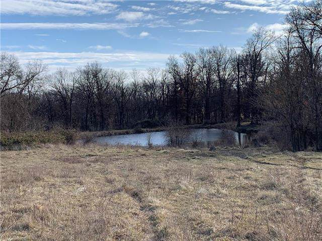 Bobwhite Road, Lawson, MO 64062 (#2200151) :: The Shannon Lyon Group - ReeceNichols