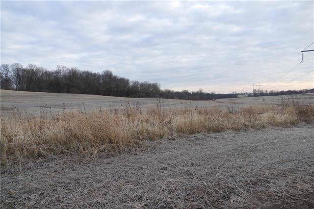 35207 E Little Road, Buckner, MO 64016 (#2200729) :: Team Real Estate