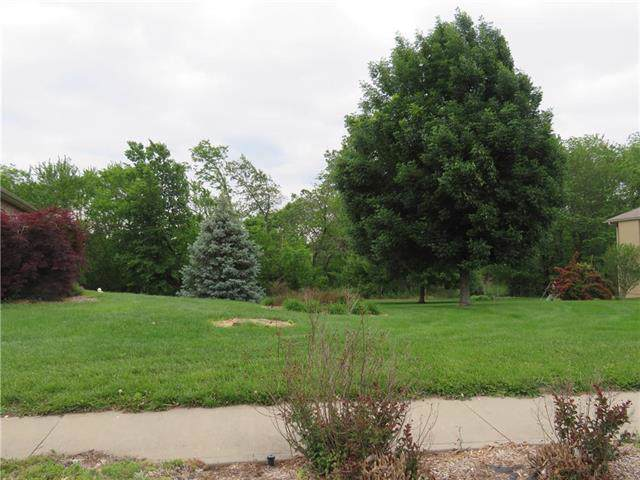 Lot 9 Clayton Place, Odessa, MO 64076 (#2200764) :: Team Real Estate