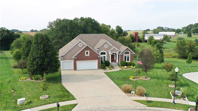 13602 Short Circle, Smithville, MO 64089 (#2202197) :: Edie Waters Network