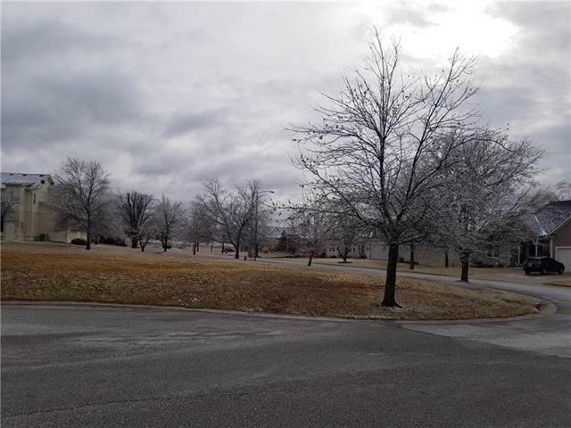 Masters Drive, Louisburg, KS 66053 (#2204013) :: Eric Craig Real Estate Team