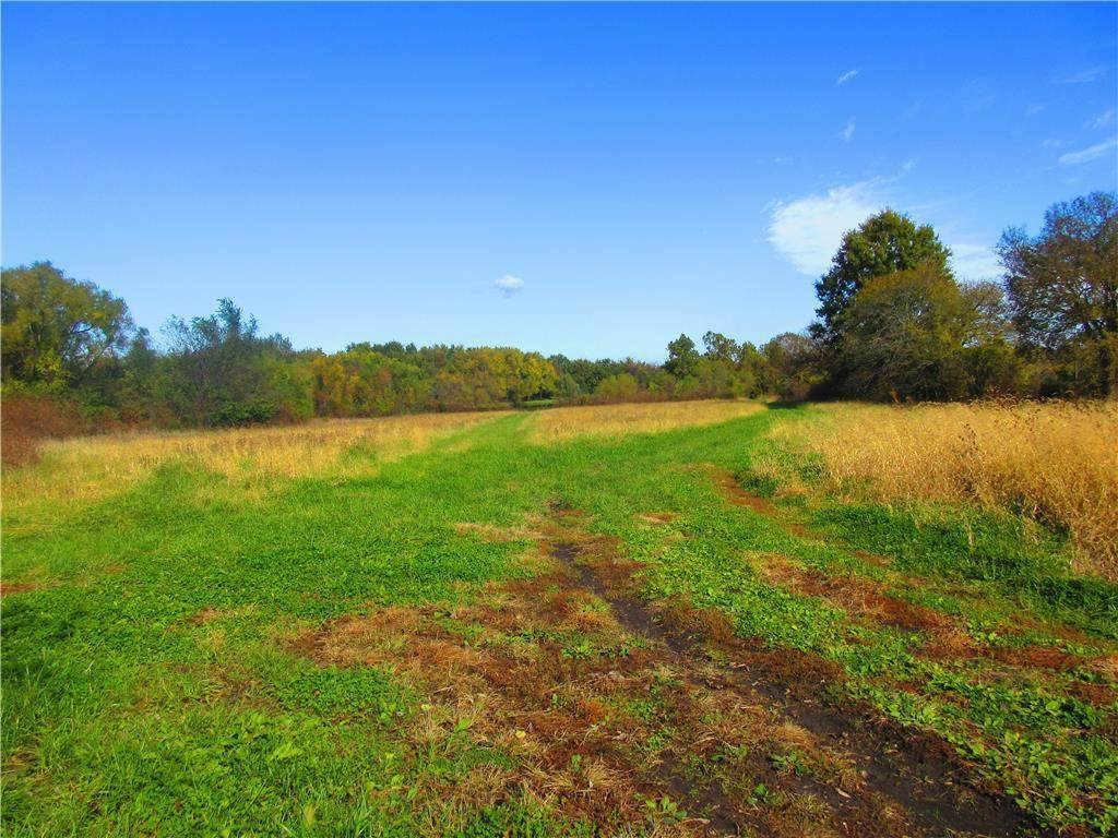 S Raffurty Road, Pleasant Hill, MO 64080 (#2212932) :: Dani Beyer Real Estate