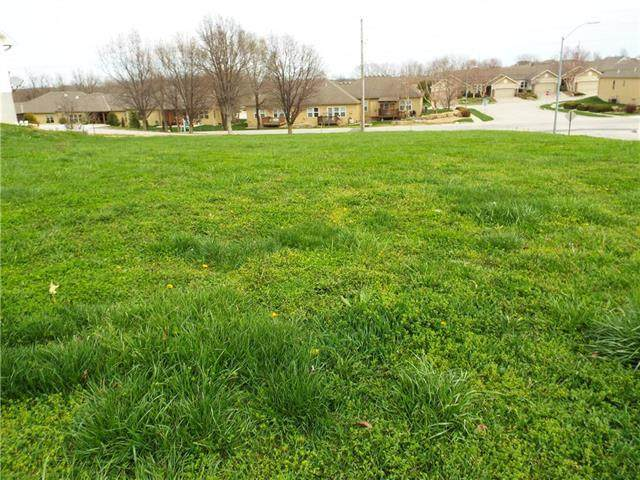 Basswood Court, Smithville, MO 64089 (#2214037) :: Eric Craig Real Estate Team