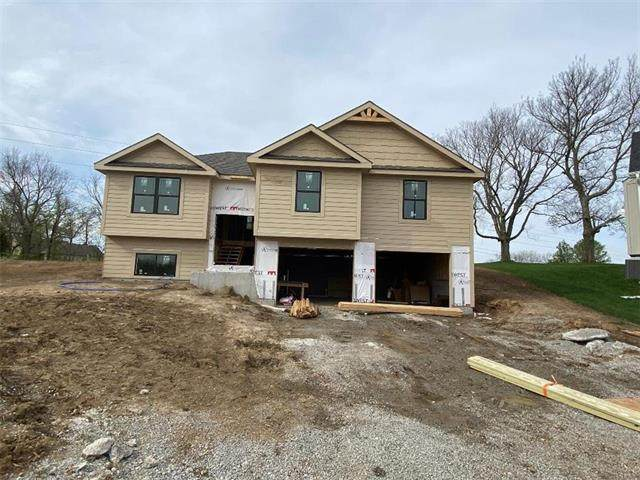1800 Mya Court, Grain Valley, MO 64029 (#2216022) :: House of Couse Group