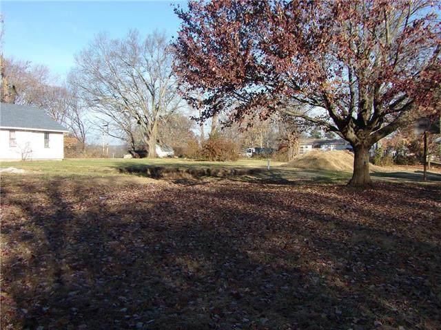 726 Walnut Street, Mound City, KS 66056 (#2222807) :: Dani Beyer Real Estate