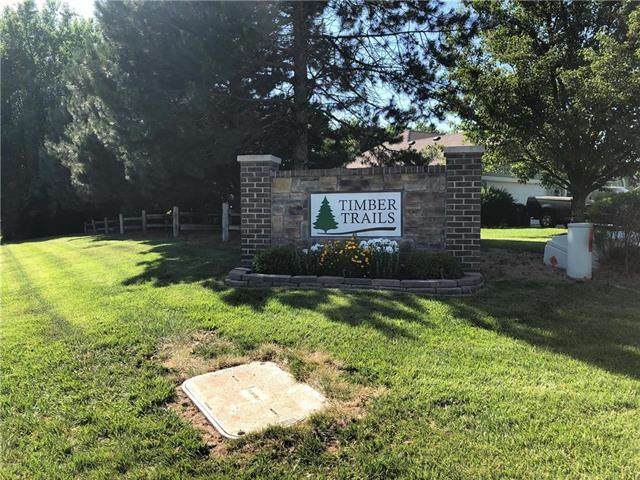 8320 Timber Trails Drive, De Soto, KS 66018 (#2225159) :: House of Couse Group