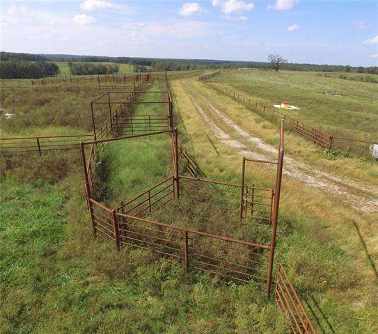 Rawhide Road Road, Edwards, MO 65326 (#2227517) :: House of Couse Group