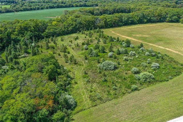 8414 Jacomo Ridge Drive, Lee's Summit, MO 64064 (#2240395) :: Five-Star Homes