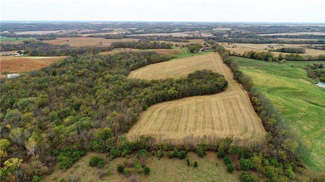 Se 14th Road, Dearborn, MO 64439 (#2250379) :: Audra Heller and Associates