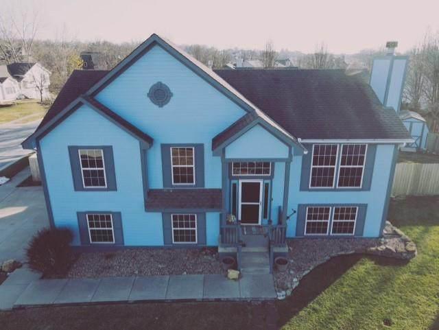 206 N Lakeshore Drive, Raymore, MO 64083 (#2258295) :: Audra Heller and Associates