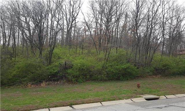 Lot 1 N Riverchase Lane, Parkville, MO 64151 (#2301750) :: The Gunselman Team