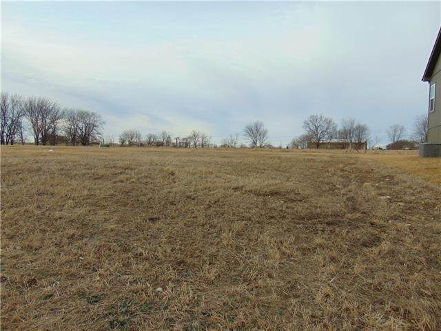 2901 Canyon Way, Harrisonville, MO 64701 (MLS #2305904) :: Stone & Story Real Estate Group