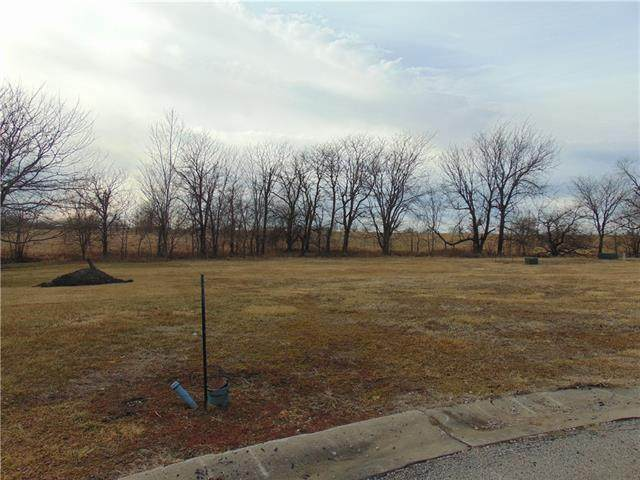 2411 Dry Creek Drive, Harrisonville, MO 64701 (MLS #2305917) :: Stone & Story Real Estate Group