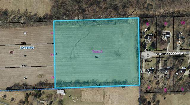 00000 Sycamore Ridge Drive, Lansing, KS 66043 (#2306845) :: The Shannon Lyon Group - ReeceNichols