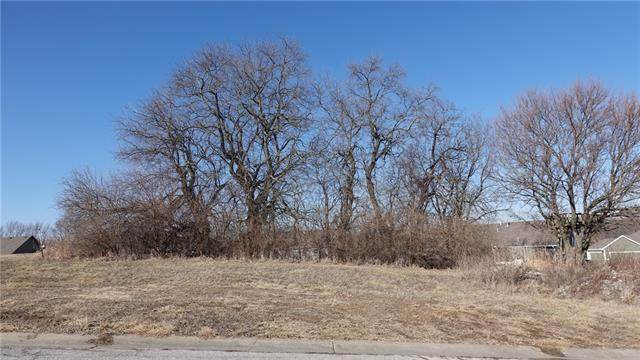 704 Ridge Crest Drive, Raymore, MO 64083 (#2306917) :: Audra Heller and Associates