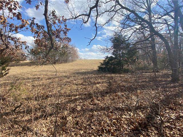 Lot 1110 Lake Viking Terrace, Gallatin, MO 64640 (#2309468) :: Ron Henderson & Associates