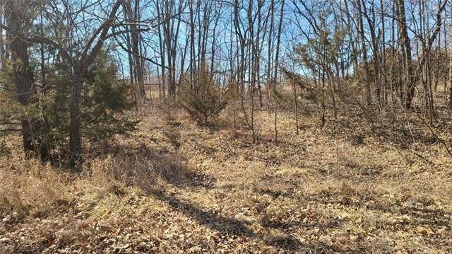 10765 Trail Ridge Drive, Ozawkie, KS 66070 (#2311163) :: Five-Star Homes