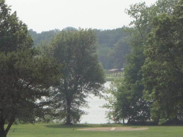 2305 Burris Drive, Harrisonville, MO 64701 (#2318898) :: The Kedish Group at Keller Williams Realty