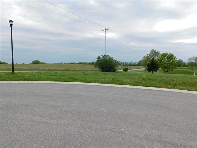 736 NE Hidden Valley Circle, Lawson, MO 64062 (#2320336) :: Edie Waters Network