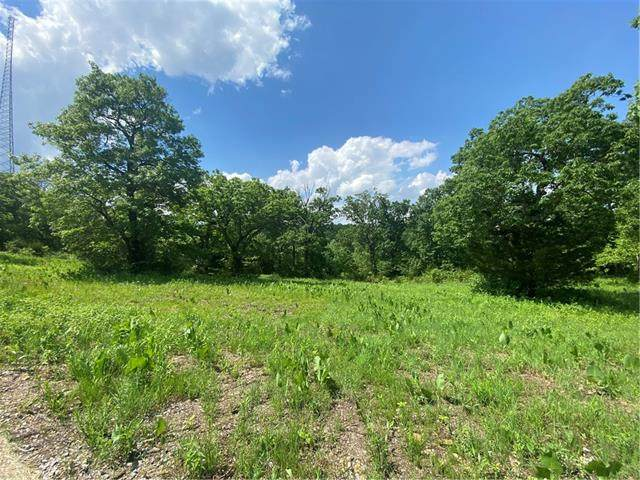 Hwy 83 Highway, Warsaw, MO 65355 (#2323556) :: The Shannon Lyon Group - ReeceNichols