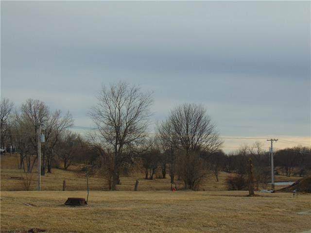 2509 Jones Ranch Parkway, Harrisonville, MO 64701 (#2325491) :: Ask Cathy Marketing Group, LLC