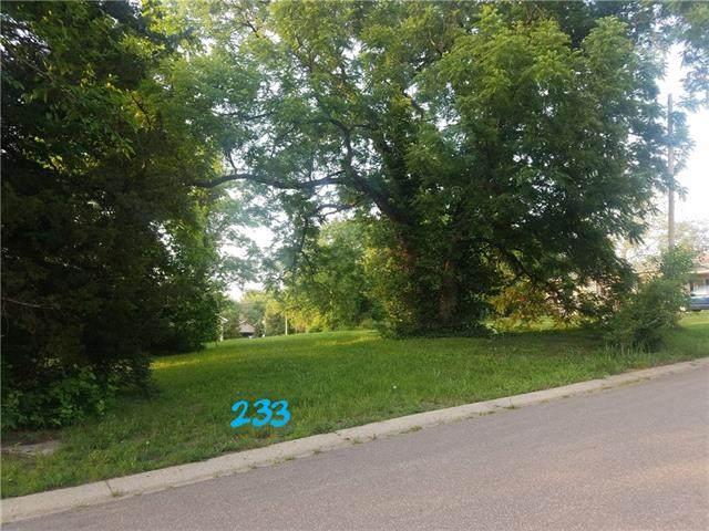 231 W Insley Avenue, Bonner Springs, KS 66012 (#2327039) :: Edie Waters Network