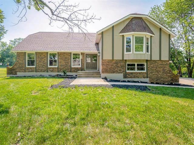 402 Appaloosa Drive, Raymore, MO 64083 (#2328634) :: Dani Beyer Real Estate