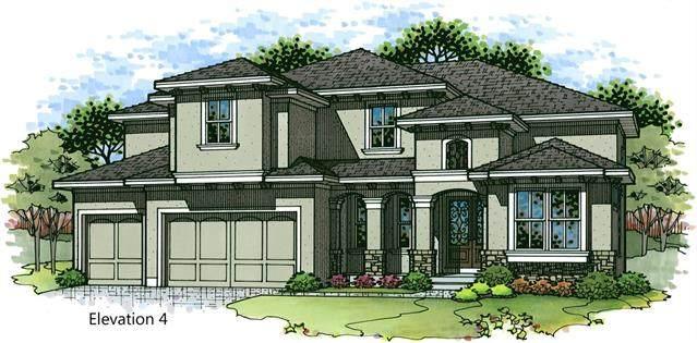 4711 W 158TH Terrace, Overland Park, KS 66224 (#2328771) :: Edie Waters Network