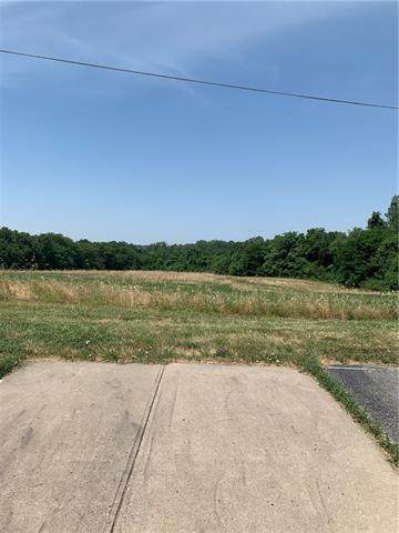 202 Ruth Ewing Road, Liberty, MO 64068 (#2329783) :: Audra Heller and Associates