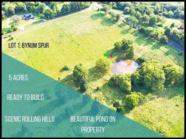 Lot 1 Bynum Spur Road, Lone Jack, MO 64070 (#2334798) :: Audra Heller and Associates