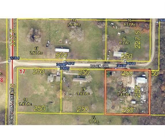 31639 Horn Circle, Excelsior Springs, MO 64024 (#2335507) :: The Gunselman Team