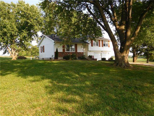 169 SW 401st Road, Centerview, MO 64019 (MLS #2336943) :: Stone & Story Real Estate Group
